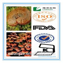 Reishi Mushroom Extract Powder Polysaccharides10%-60%(UV) Reishi Mushroom Extract