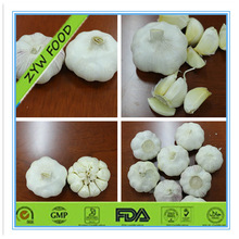 Best Experienced Normal White/Pure White Garlic Rich Nutrition