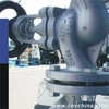 Vatac Casing Steel Bellow Sealed Globe Valve 245