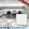 Foshan factory price of 600X600 home decor porcelain homogeneous tile