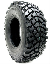 radial truck tire with nice future