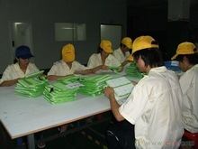 China quality inspection & warehouse service,buying service,China agent service