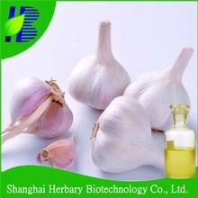 Black Garlic Extract,pure Garlic Oil/Garlic P.E.