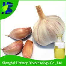 Garlic/Deodorized Garlic Oil 30% Allicin/Garlic Oil