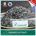 Factory Price High Quality Ascophyllum Nodosum Seaweed Extract