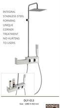 Taizhou stainless steel bathroom Shower rain set DLY-006