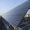 Bluesun EPC projects in Japan poly 250w solar panel energy