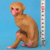 Animal theme park high quality decoration life size little monkey