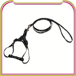 L4074 custom led dog leashes