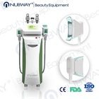 Factory price!! Newest and Best Cryo + RF + Cavitation japan sex 3d slimming machine