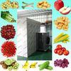 KINKAI fruit vegetable drying machine for dried fruit making