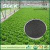 Biochar organic fertilizer better than chicken manure