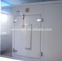 walk-in Freezer/refrigerating doors/cold room door