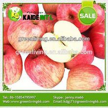 Fresh Apple Chinese Fruit Gala Apple