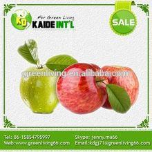 Fresh Gala Sweet Organic Apples