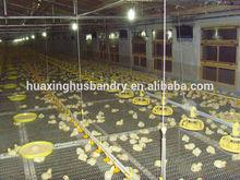 broiler pan feeding system/ Automatic Chicken feeding line