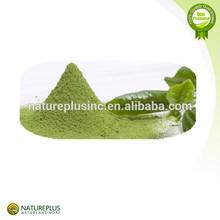2014 New Product on Chinese Market Matcha Green Tea Extract/Matcha Green Tea Powder