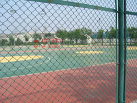 High Quality&Best Price!!!basketball mesh/vinyl coated chain link fence(Anping facotry)