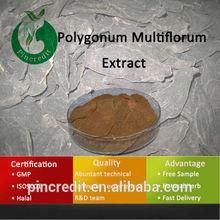 Polygonum Multiflorum Powder Polygonum Multiflorum Extract