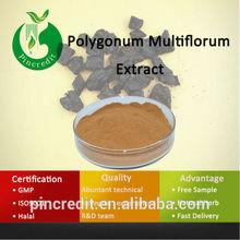 100%Polygonum Multiflorum/Polygonum Multiflorum Root Extract