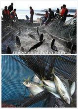 Fishing Net, Nylon Monofilament, Thickness 0,4mm, Double Kno to Chile Valparaiso / multifilamento e monofilamento rede de pesca