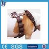 custom high quality leather pet strap for peg dog