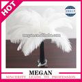 Venta al por mayor de calidad superior blanco plumas de avestruz plumas venta