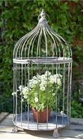 handmade garden decor centerpiece shabby metal dome top bird cage vintage,bird cage pet cage,round bird cage