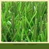 practical mini football artificial grass from Zhejiang
