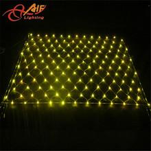 Zhong shan factory led net light/christmas light/holiday light