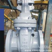 DIN STD rising stem gate valve 171