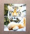 3d animal pintura de la cara del tigre diseño de la venta entera