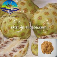 Natural Noni fruit extract/Morinda citrifolia extract powder