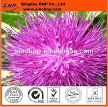 BNP Sells milk thistle plant extract (Silymarin & Silybin)