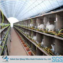 stainless steel rabbit cage for reproduction