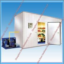 Optimum Design Cold Storage Container/Cold Storage For Vegetables