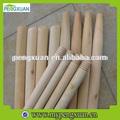 Eucalipto troncos de madera con buena calidad
