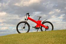 Seagull CVT-250w electric human transporter Design based on human,mountain electric bike