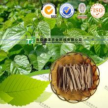 Hubei Top Grade white mulberry