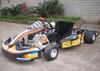 200cc Racing go karts for sale