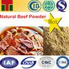 Beef Flavor powder /Beef seasoning powder/Beef Essence powder