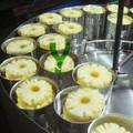 Abacaxi em conserva alimentos enlatados Kosher com HALAL certificado
