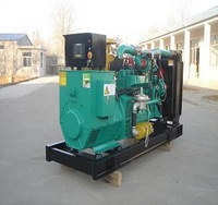 high quality 1000 kw natural gas generator for supply