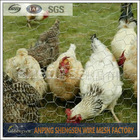 anping factory hexagonal chicken wire mesh with ISO 9001 by CQC
