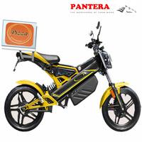 PT-E001 EEC Cheap Chongqing Popular New Model Electric Dirt Bike