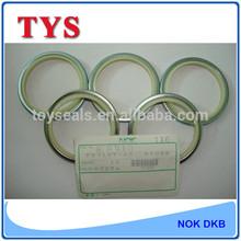 Rod seal, DKBI Wiper Seals, Hydraulic Cylinder oil seal