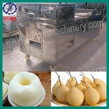 QHJ-150 automatic cherry/ dates/peach pitting machine