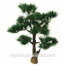 china ornamental pine trees 0534