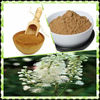 Black Cohosh Extract -Triterpenoid Saponins 2.5% -20%