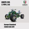 250CC Racing ATV LWATV-205 EEC Promotion